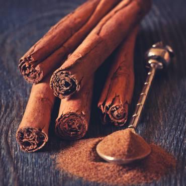 Cinnamon + Honey: The Secret of our Ancestors