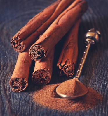 Cinnamon + Honey: The Secret of our Ancestors